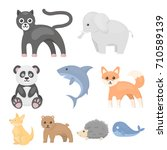 animals set icons in cartoon... | Shutterstock .eps vector #710589139