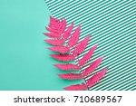 fern fashion. tropical leaf.... | Shutterstock . vector #710689567