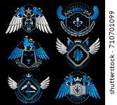 vector classy heraldic coat of...   Shutterstock .eps vector #710701099