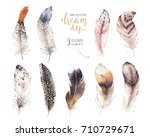 hand drawn watercolor paintings ... | Shutterstock . vector #710729671
