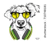 dog in glasses and headphones.... | Shutterstock .eps vector #710748181