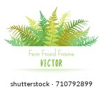 detailed bracken and silver... | Shutterstock .eps vector #710792899