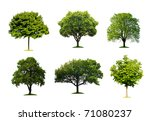 collection of isolated summer... | Shutterstock . vector #71080237