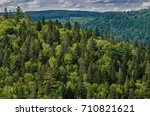 forest in the canadian landscape | Shutterstock . vector #710821621