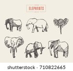 collection of realistic... | Shutterstock .eps vector #710822665