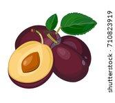 plum isolated on white... | Shutterstock .eps vector #710823919