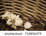Vintage Dried Rose