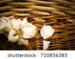 Dried Rose In A Basket