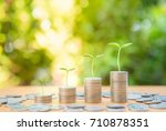plant growing up on the growing ...   Shutterstock . vector #710878351