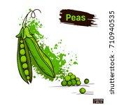 vector image. green peas ... | Shutterstock .eps vector #710940535