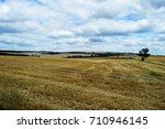 landscape | Shutterstock . vector #710946145