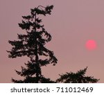 Red Sun Ball In A Smoky Sunset...