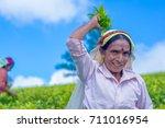 haputale  sri lanka   september ... | Shutterstock . vector #711016954