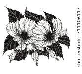 hibiscus flower vector by hand... | Shutterstock .eps vector #711106117