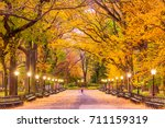 central park at the mall in new ... | Shutterstock . vector #711159319