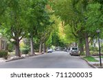 Small photo of Tall Liquid amber, commonly called sweet gum tree, or American Sweet gum tree, lining an older neighborhood in Northern California. Summer ending fall beginning soon. Green turning yellow