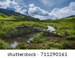 the 'dzukou' valley   this ... | Shutterstock . vector #711290161