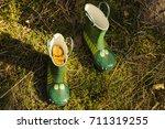 mushrooms in rubber boots ... | Shutterstock . vector #711319255