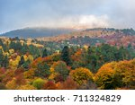 autumn landscape in the... | Shutterstock . vector #711324829