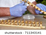 working process on a bee apiary ... | Shutterstock . vector #711343141