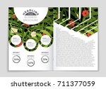 abstract vector layout... | Shutterstock .eps vector #711377059