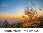 romantic colorful sky with... | Shutterstock . vector #711424465