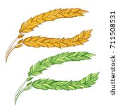a drawn vector set of ripe and... | Shutterstock .eps vector #711508531
