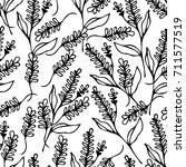 lavender vector illustration.... | Shutterstock .eps vector #711577519