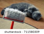 brush for combing the cat fur... | Shutterstock . vector #711580309