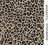 leopard pattern texture... | Shutterstock .eps vector #711595549