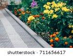 perspective view of monotone... | Shutterstock . vector #711656617