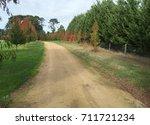 rural driveway in fall   Shutterstock . vector #711721234