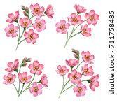 watercolor floral composition ... | Shutterstock . vector #711758485