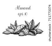 hand drawn almond | Shutterstock .eps vector #711773374