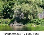 weeping willow   Shutterstock . vector #711834151