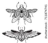beetle bug tattoo drawing.... | Shutterstock .eps vector #711874741