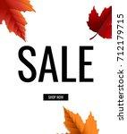 sale poster  | Shutterstock . vector #712179715