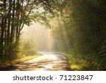Autumn Scenery Of Rural Road I...
