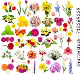collection of creative flower... | Shutterstock . vector #712269229