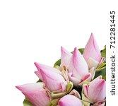 close up pink lotus flower... | Shutterstock . vector #712281445