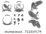vector set hand painted eagle... | Shutterstock .eps vector #712319179