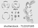 vector set hand painted eagle... | Shutterstock .eps vector #712319185