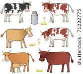 cow set. several cows  ... | Shutterstock .eps vector #71232775