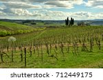 26 march 2017  vineyards in... | Shutterstock . vector #712449175