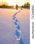 Track Of Hiker In A Winter ...