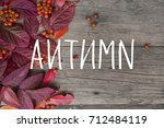 bright red autumn leaves and... | Shutterstock . vector #712484119