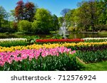 Blooming Tulips Flowerbeds In...