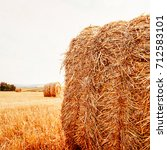 Small photo of Hay bale. Agriculture field with sky. Rural nature in the farm land. Straw on the meadow. Wheat yellow golden harvest in summer. Countryside natural landscape. Grain crop, harvesting.