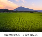rice fields and mountain view... | Shutterstock . vector #712640761