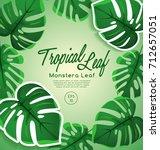 set of tropical leaves  ... | Shutterstock .eps vector #712657051